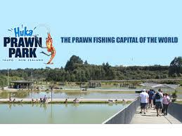 Prawn Park Lake Taupo